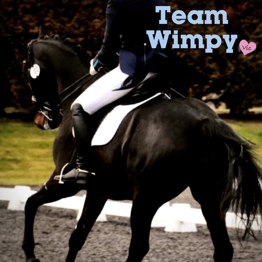 Team Wimpy Update 2: By Jess Griffiths – I owe it to friends… post thumbnail image