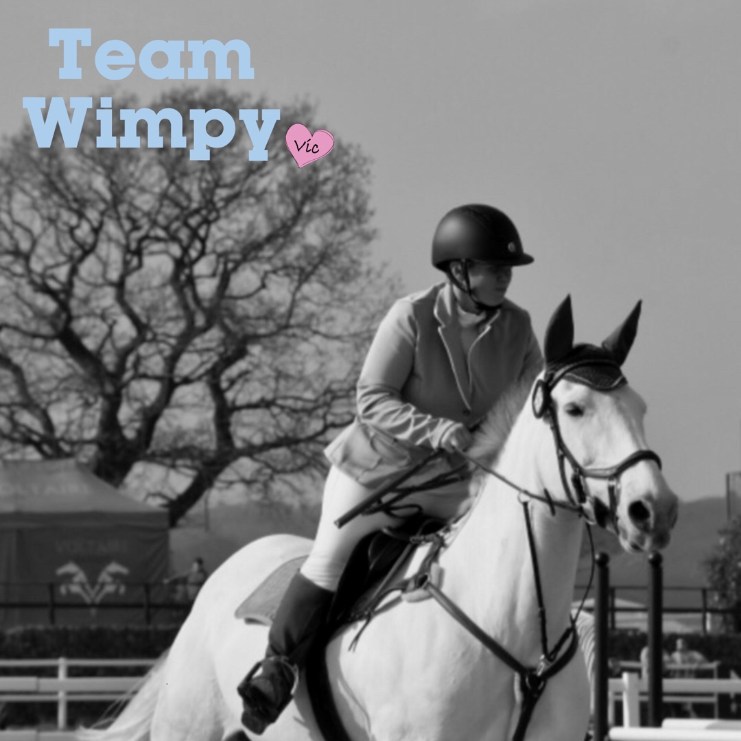 Team Wimpy Update 6: A stay-away show, sat nav blips and living for today, By Nina Studley. post thumbnail image