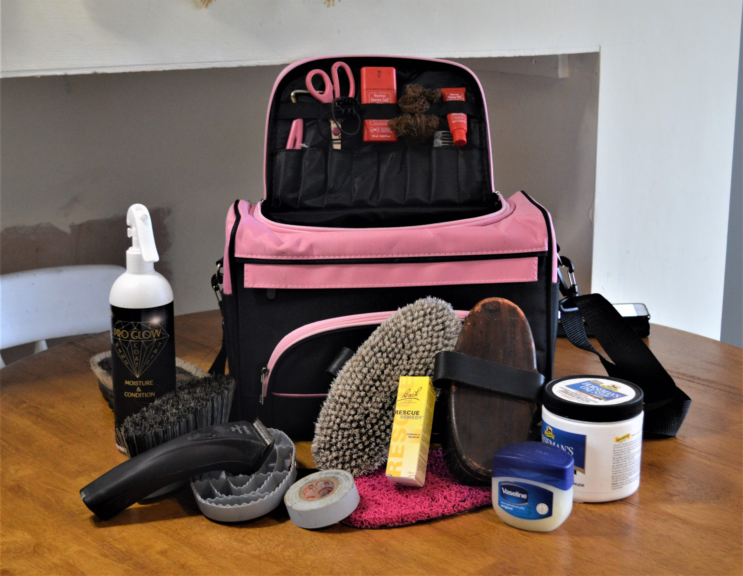 Stable Management Tips: What's in my grooming bag? post thumbnail image